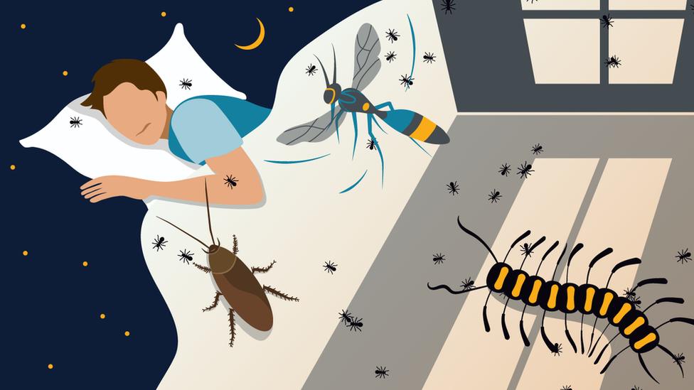Korona virus i zdravlje: Kako pandemija utiče na vaše snove