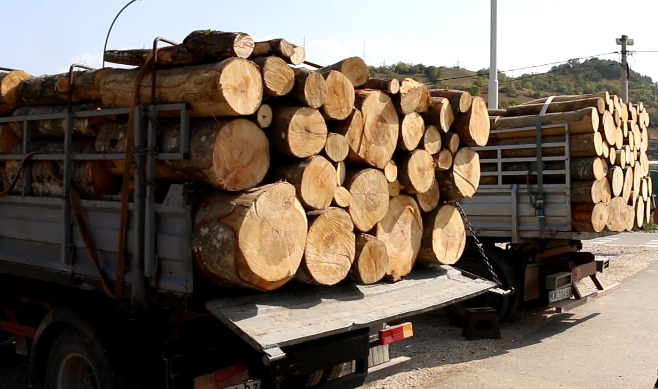 drva 2
